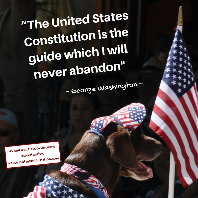 the-constitution-is-the-guide-which-i-will-never-abandon-GeorgeWashington